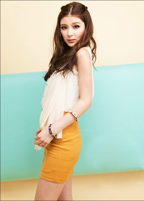 Mix Match Solid Color and Back Hidden Zipper Design Women's Polyester Skirt