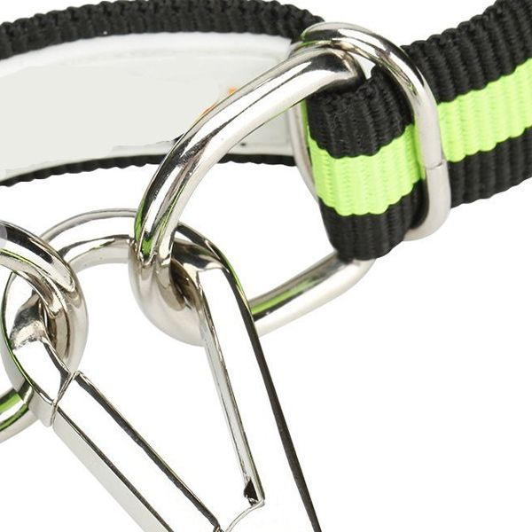 Puppy Dog Belt Elastic Telescopic Traction Rope