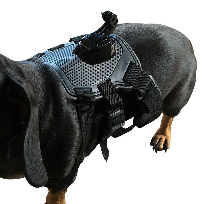 Dog Adjustable Harness Chest Mount for Gopro