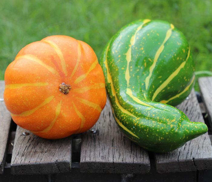 Foam Vegetable Decorative Simulation Bent Pumpkin