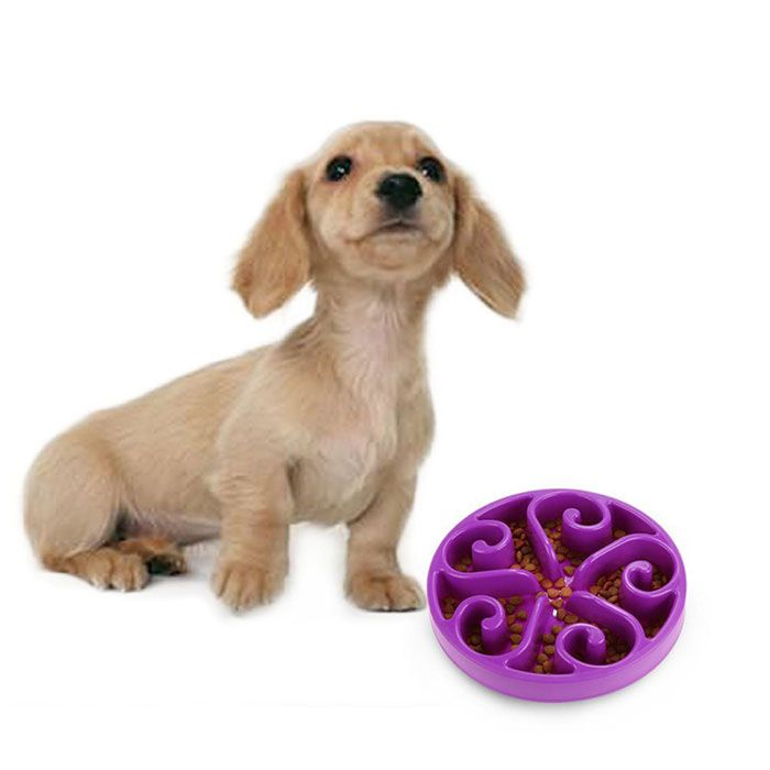 Slow Food Pet Feeder Anti Choke Dog Bowl