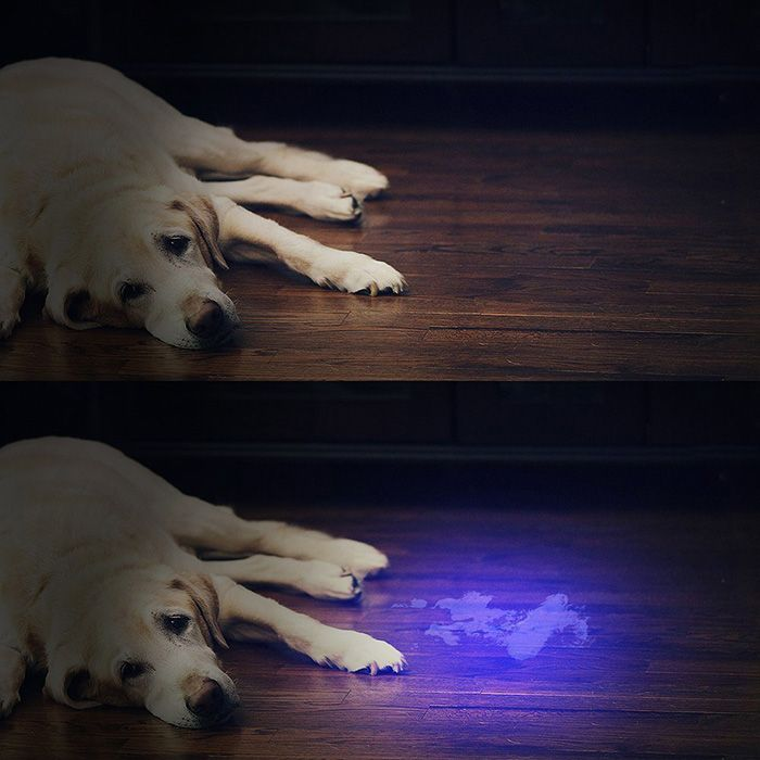 Aluminium Alloy 21 LED UV Flashlight