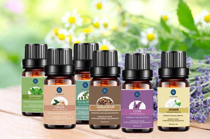 6Pcs Peppermint Clove Eucalyptus Ginger Sandalwood Jasmine Essential Oil Set