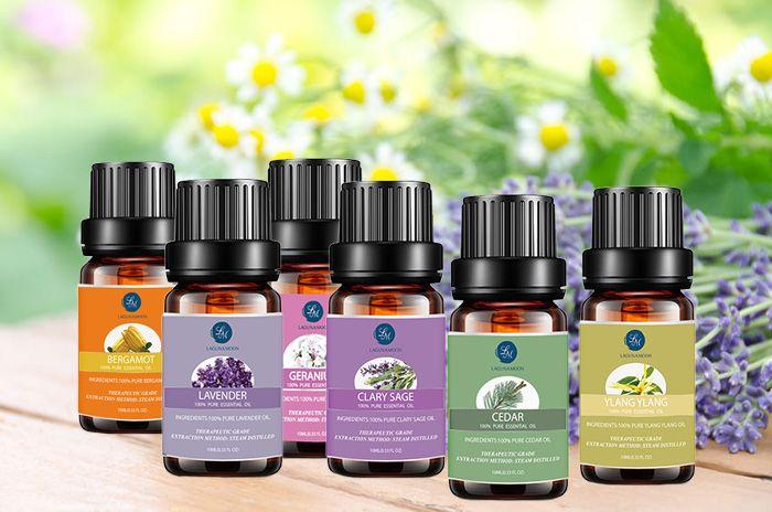6 Pieces Bergamot Lavender Geranium Cedar Ylang Ylang Clary Sage Essential Oil Set