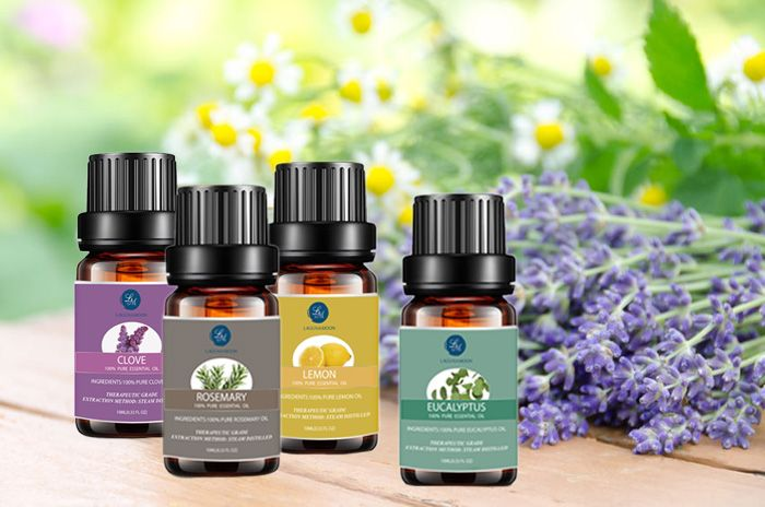 Top 4 Pieces Clove Eucalyptus Lemon Rosemary Essential Oil