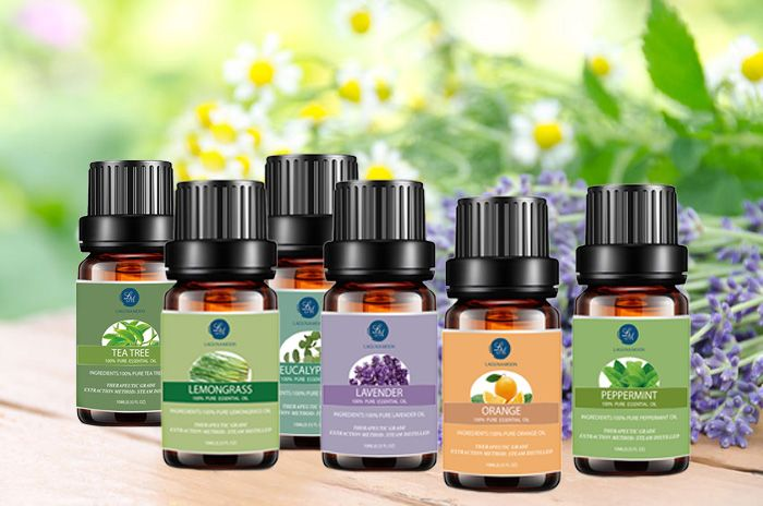 Top 6 Tea Tree Eucalyptus Lavender Lemongrass Orange Peppermint Essential Oil Suit