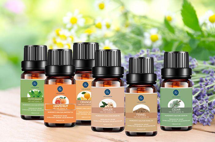 6 Pieces Digestive Blend Essential Oil Set