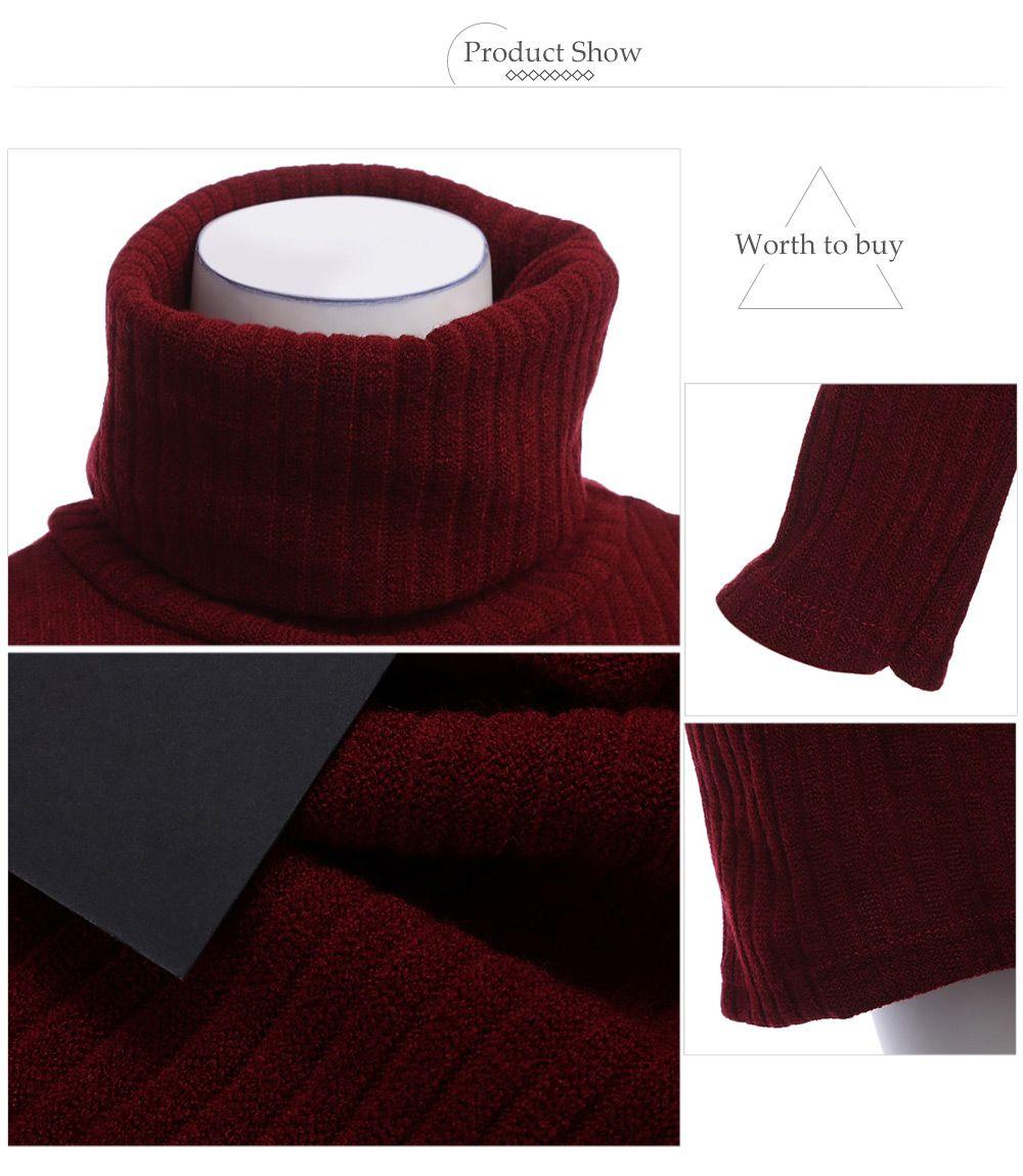 Brief Turtleneck Rib Knitted Women Midi Sheath Dress