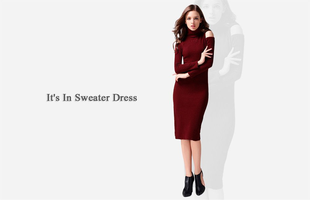 Brief Turtleneck Rib Knitted Women Midi Sheath Dress