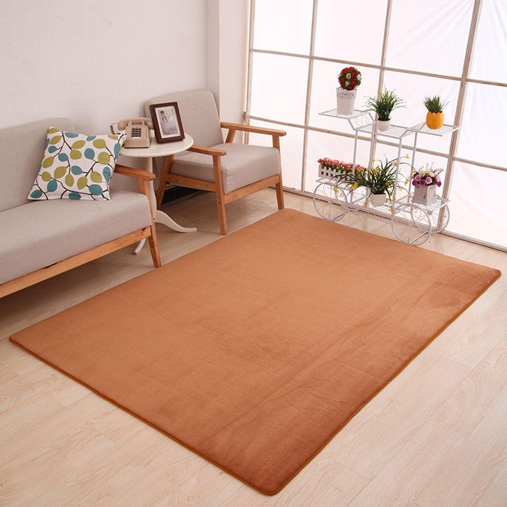 Doormat Modern Style Solid Water Proof Carpet.