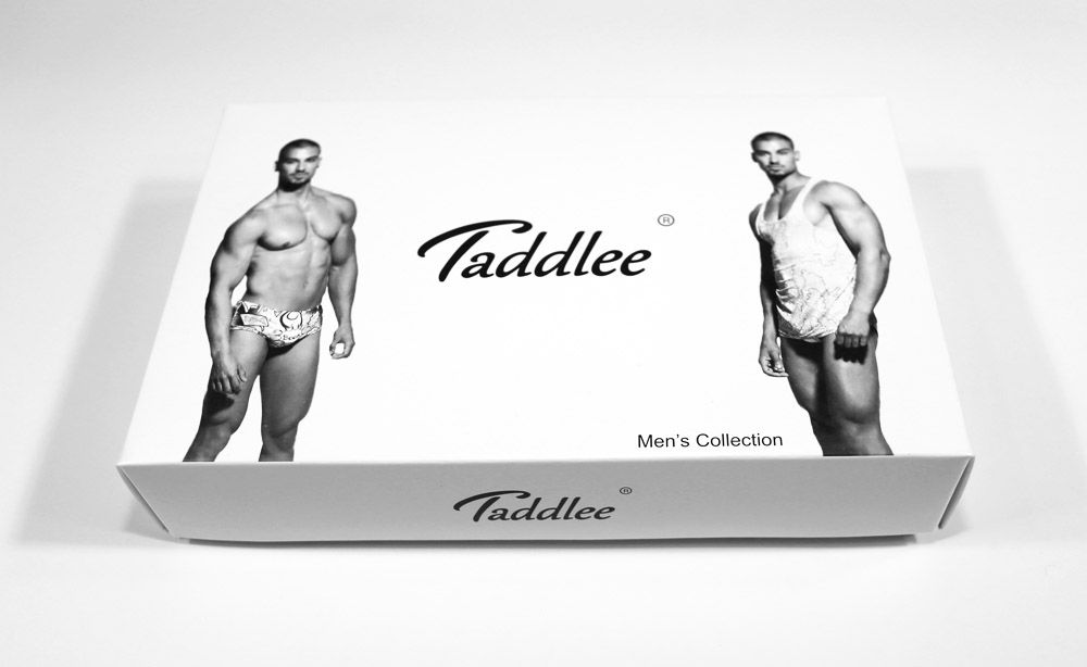 Taddlee 4pcs Men's Briefs Low Rise Underwear