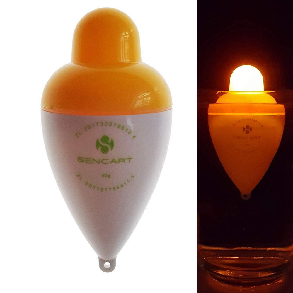 Sencart LED Luminous Fishing Float Buoy Vertical Floats Bobbers Tackle  + Battery CR2032