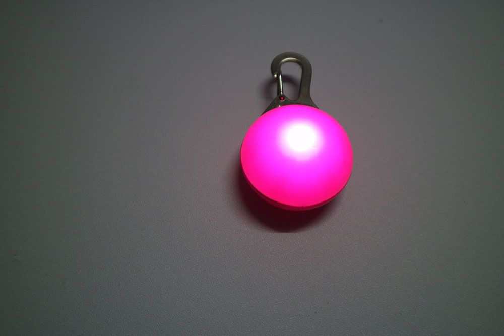 Small Pet Glowing Pendant