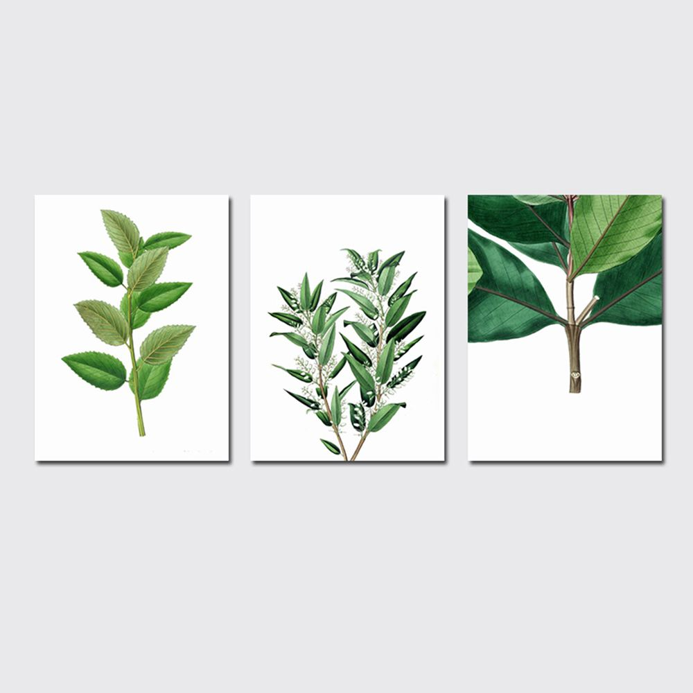 QiaoJiaHuaYuan No Frame Canvas Three Pieces of the Living Room Bedroom Background Decoration Hanging Paint plant Clear n